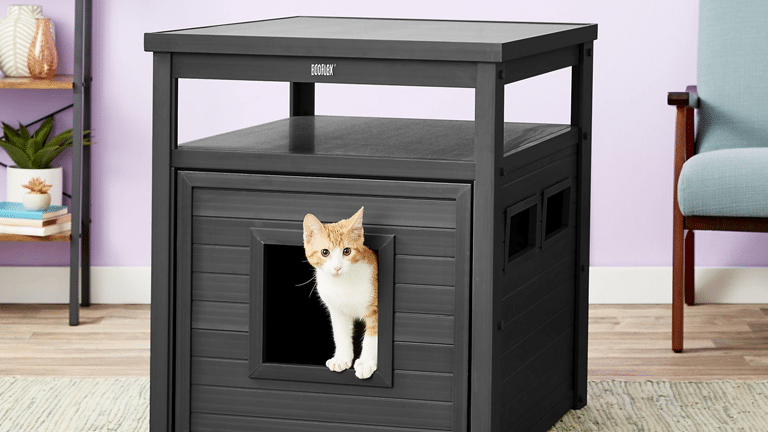 Litter Box Enclosures Best Furniture For Hidden Litter Kitty Catter